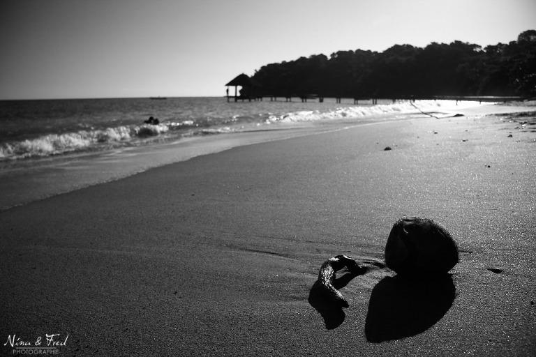 Plage de sable fin et noix de coco.