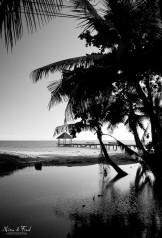 Kani-kéli à Mayotte