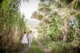 Mariés qui marchent dans un champ de cannes