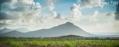 photographie d'un paysage de l'île Maurice