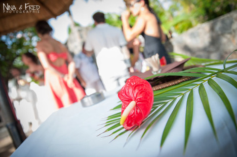 fleur tropicale mariage M&F